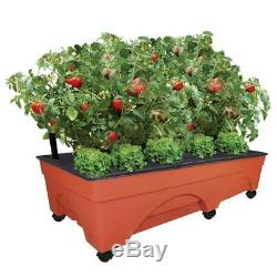 EMSCO Group Big City Picker Raised Bed Grow Box Self Watering and