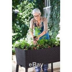 Elevated Garden Bed Raised Grow Box Planter Water Indicator Herbs Vegetables