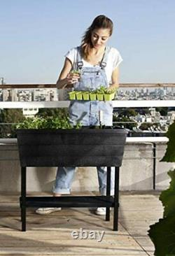 KETER Urban Bloomer 12.7 Gallon Raised Garden Bed with Self Watering Planter Box