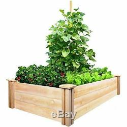 Natural Cedar Wood Growing Place Vegetables Raised Garden Fence Bed Planter Box