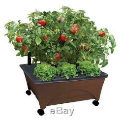 Raised Garden Bed Patio Grow Box Kit Planter Watering System Vegetables EMSCO